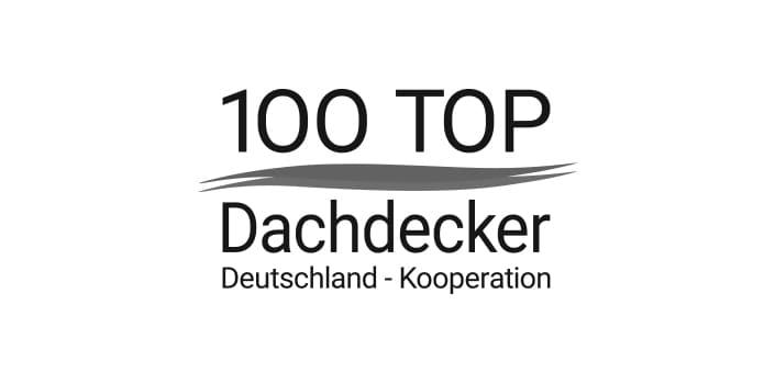 logo 100TOP